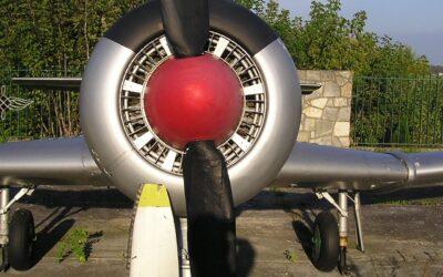 Śmigła samolotu TS -8 Bies